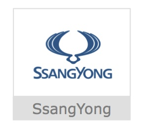 SsangYong Button