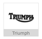 Triumph Button